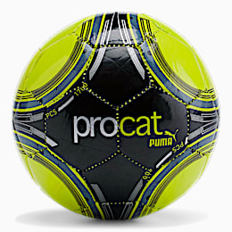 ProCat ProPass Mini Soccer Ball