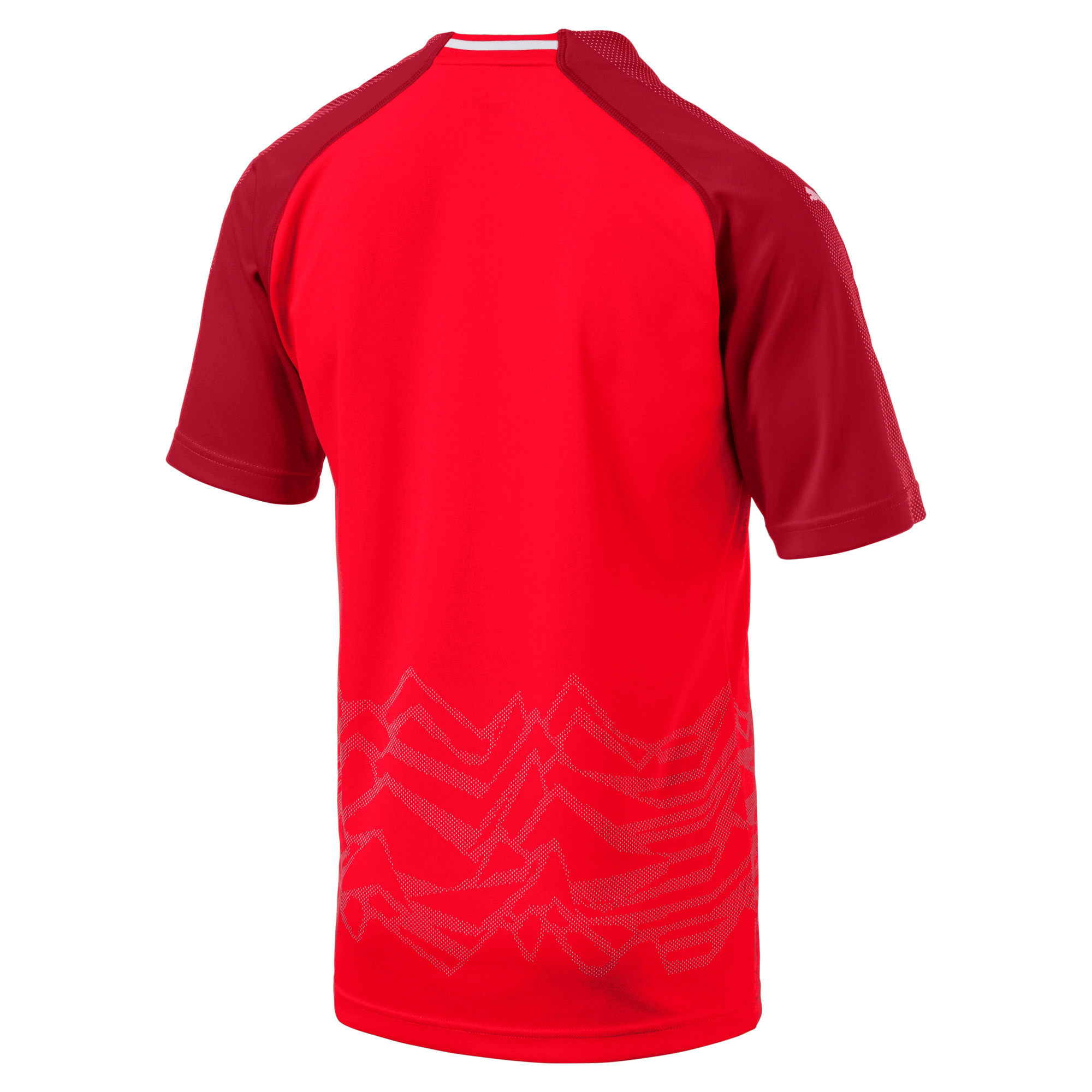 Thumbnail 2 of Replica thuisshirt Oostenrijk, Puma Red-Chili Pepper, medium