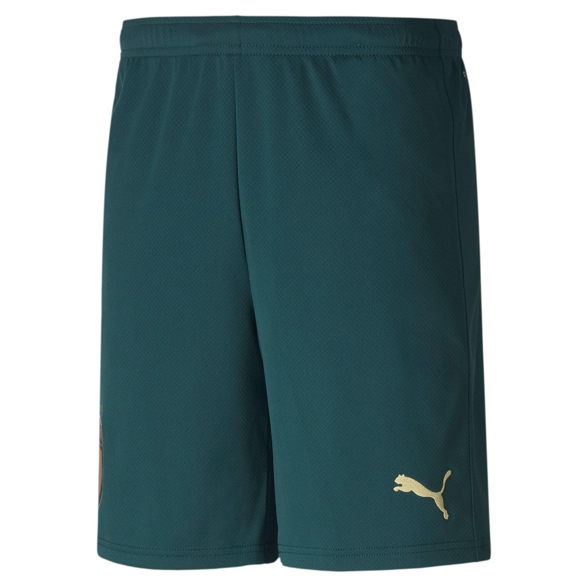 Thumbnail 1 of FIGC Men's Third Replica Shorts, Ponderosa Pine-Peacoat, medium