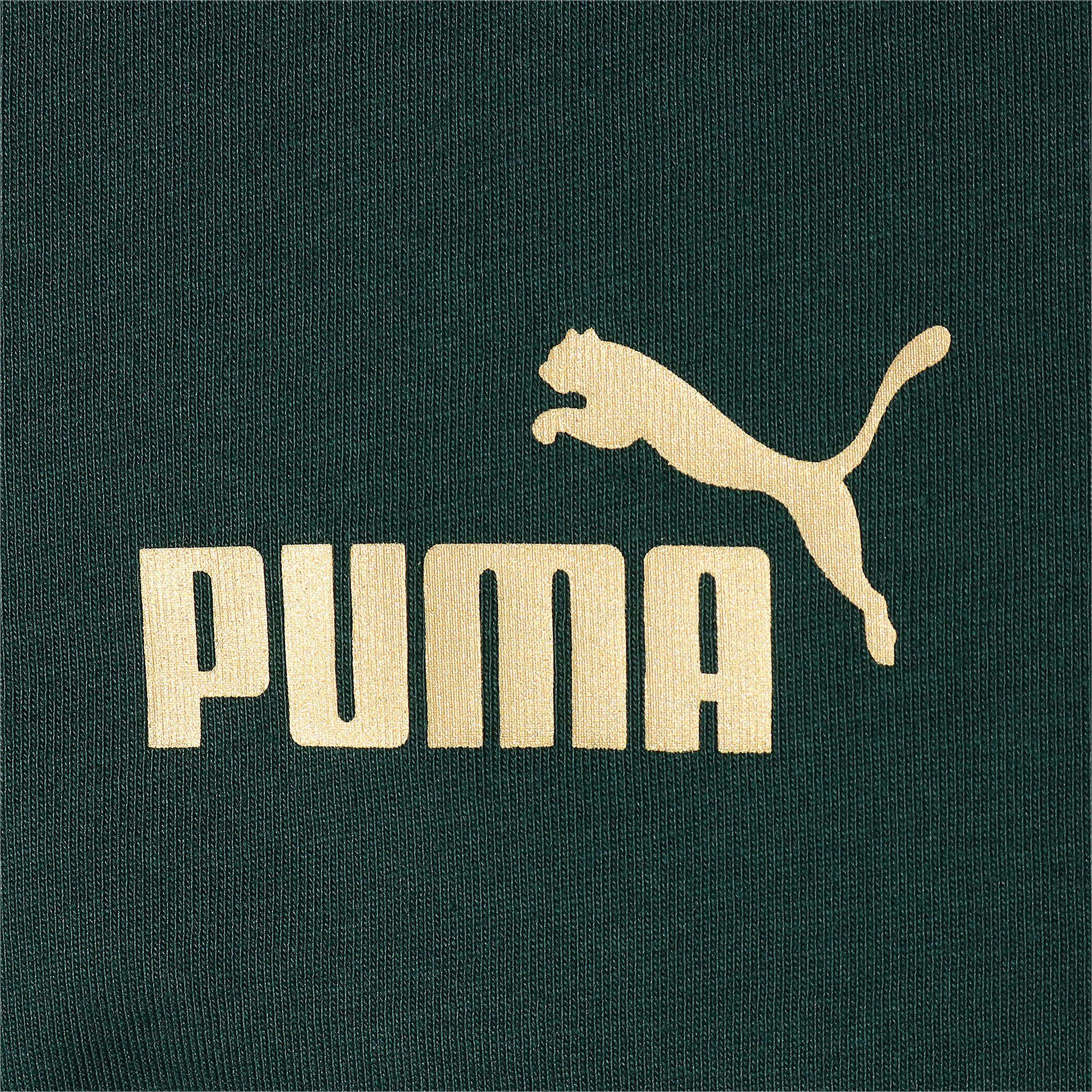 Thumbnail 4 of FIGC イタリア FTBL CULTURE Tシャツ 半袖, Ponderosa Pine, medium-JPN