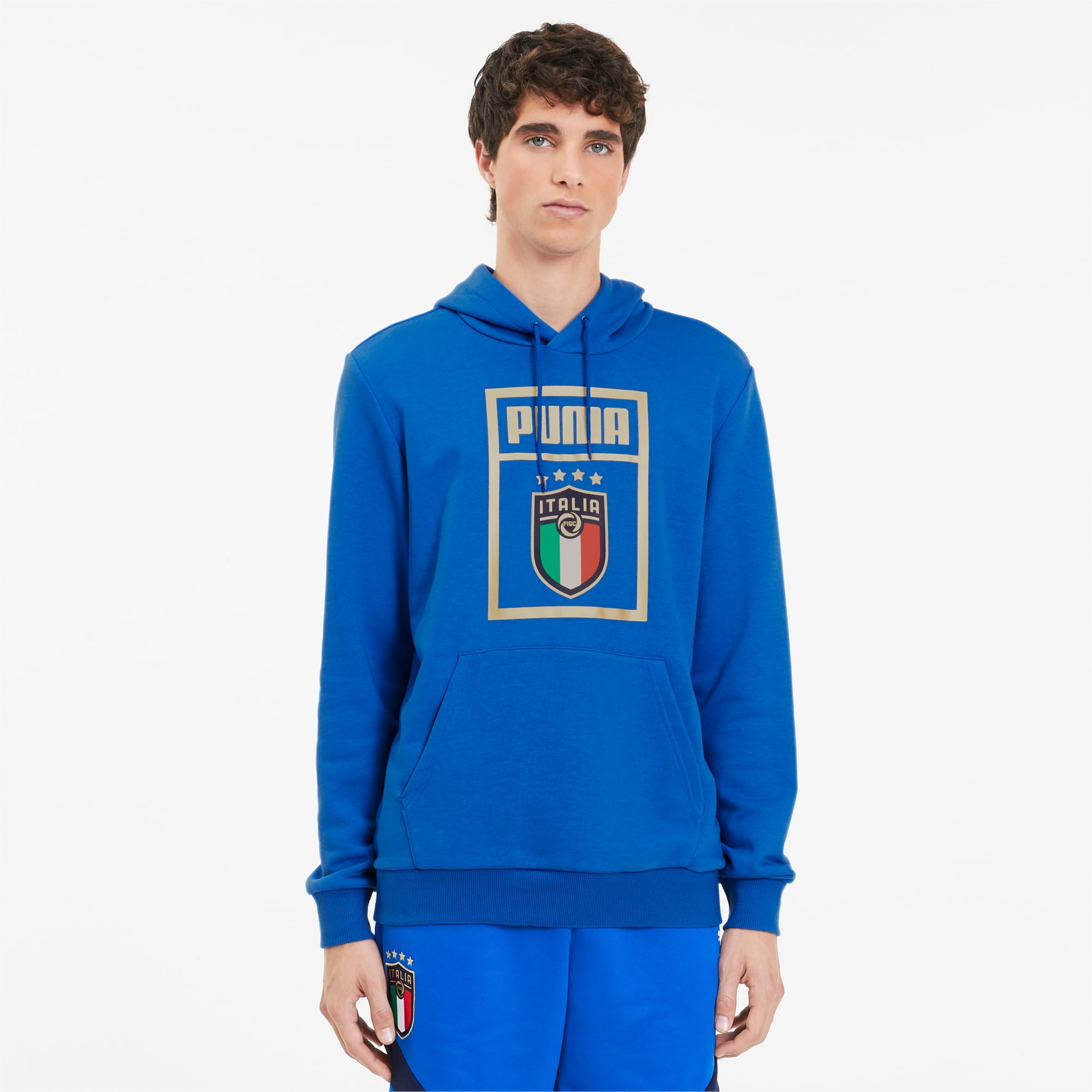 FIGC PUMA DNA Men's Hoodie