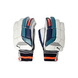 EVO 4 Batting Gloves