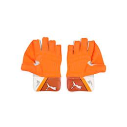 EVO 2 Wicket Keeper glove