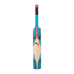 evoPOWER 3.17 SNR bat