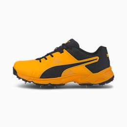 PUMA Spike 19.1 Men's Cricket Shoes, Orange Alert-Puma Black, small-IND