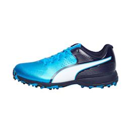 PUMA 19 FH Rubber one8 Men's Cricket Shoes, Bleu Azur-Puma White-Peacoat, small-IND