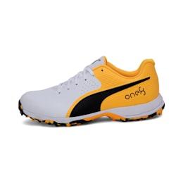 PUMA 19 FH Rubber one8 Men's Cricket Shoes, White-Black-Orange, small-IND