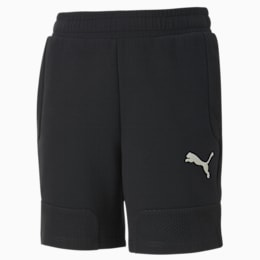 Evostripe Boys' Shorts