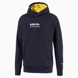 Red Bull Racing Dynamic Bull hoodie voor heren