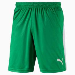 Herren LIGA Shorts