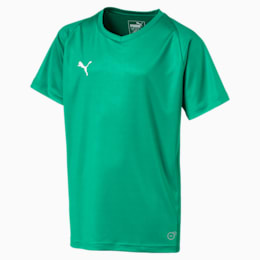 Liga Core Junior Football Jersey, Pepper Green-Puma White, small