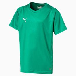Maglia da calcio Liga Core Junior, Pepper Green-Puma White, small