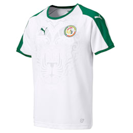 Senegal Home Shirt, Puma White-Pepper Green, small