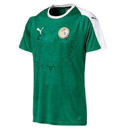 Senegal Away Shirt, Pepper Green-Puma White, small