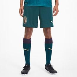 FIGC Men's Third Replica Shorts, Ponderosa Pine-Peacoat, small