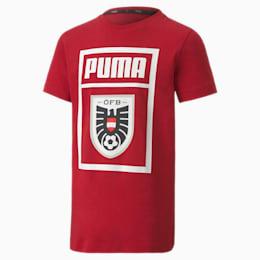 Camiseta para niño Austria DNA