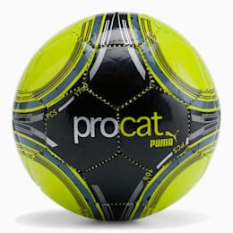 ProCat ProPass Mini Soccer Ball