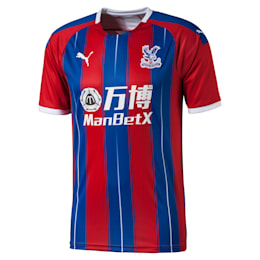 Crystal Palace Men's Home Replica Jersey