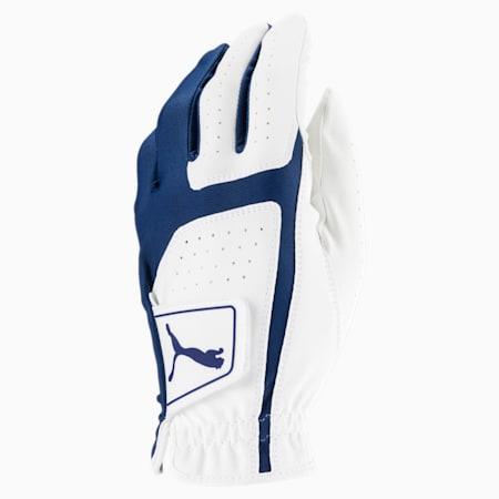 Flexlite Left Hand Men's Golf Glove, Bright White-Monaco Blue, small-SEA