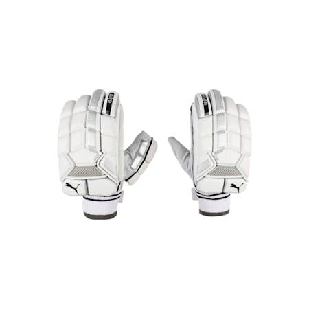 EVO SE Batting glove, White-Silver-Black-L H, small-IND