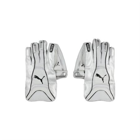 EVO SE Wicket Keeper glove, Puma White-Silver-Puma Black, small-IND