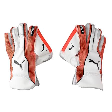 EVO 3 Wicket Keeper glove, Nrgy Red-Puma Black, small-IND