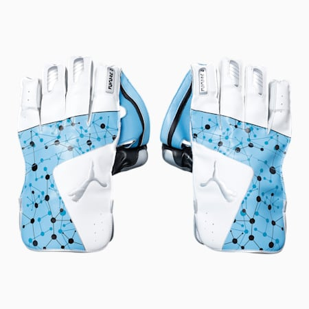 PUMA Future 20.2 Cricket Wicket Keeping Gloves, Ethereal Blue-Puma Black-Silver, small-IND