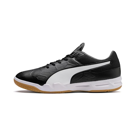 Tenaz Indoor Unisex Teamsport Shoes, Puma Black-Puma White-Iron Gate-Gum, small-IND