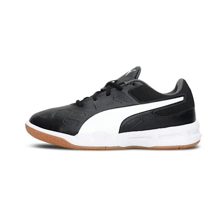 Tenaz Kids' Indoor Teamsport Shoes, Puma Black-Puma White-Iron Gate-Gum, small-IND