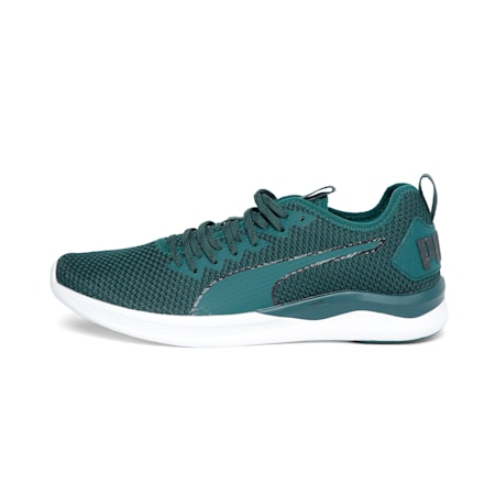 IGNITE Flash FS Men's Running Shoes, Ponderosa Pine-Puma Black, small-SEA