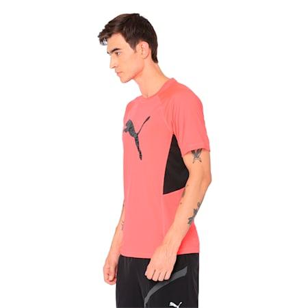 Active Training Men's Vent Cat T-Shirt, Bright Plasma, small-IND