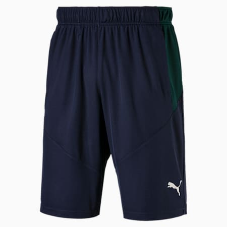 Energy Knitted Men's Training Shorts, Peacoat-Ponderosa Pine, small-SEA