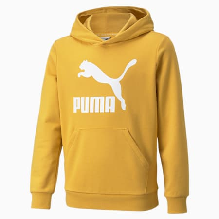 Classics Logo Youth Hoodie, Mineral Yellow, small-GBR