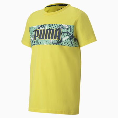 Alpha Graphic T-Shirt, Meadowlark, small-IND