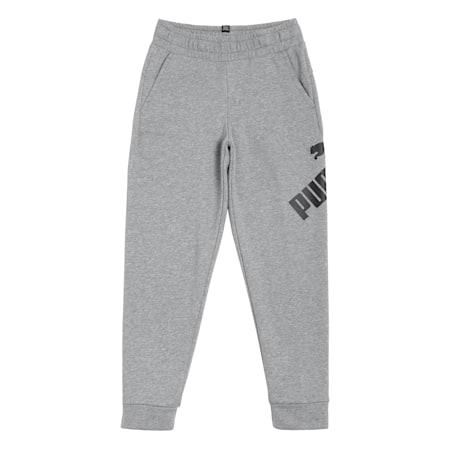 Big Logo Boys' Sweatpants, Medium Gray Heather, small-IND