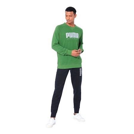 Athletics Crew Neck Men's Sweater, Garden Green, small-IND