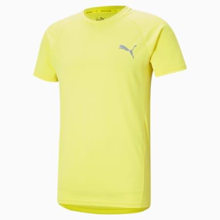 Evostripe Men's Slim T-shirt, Celandine, small-IND