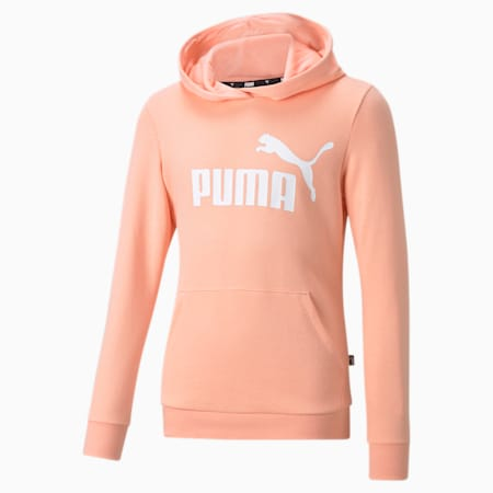 Essentials Logo Youth Hoodie, Apricot Blush, small-GBR