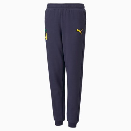 Pantalones de deporte Neymar Jr Future para jóvenes, Peacoat-Dandelion, small