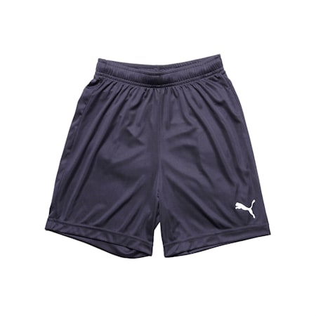 ftblPLAY dryCELL Kids' Shorts, Puma New Navy, small-IND