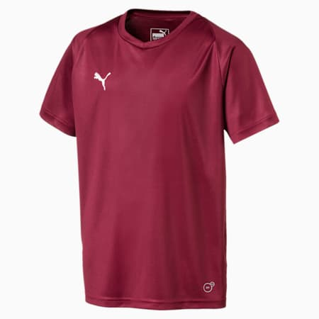 Koszulka pilkarska Liga Core Junior, Cordovan-Puma White, small