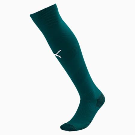Man City Spiral Men's Socks, Ponderosa Pine-Puma White, small
