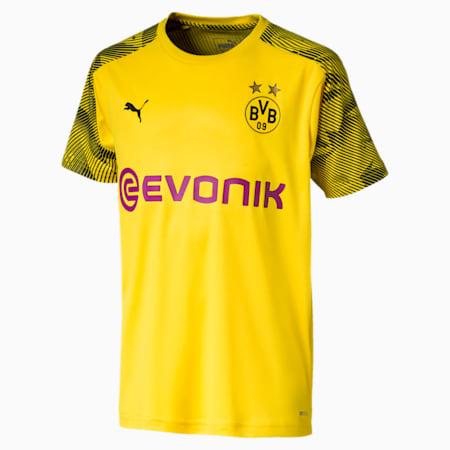 BVB Boys' Training Jersey JR, Cyber Yellow-Puma Black, small