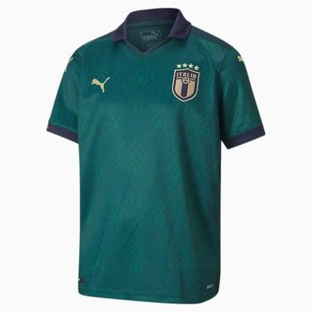 FIGC Third Shirt Replica Jersey JR, Ponderosa Pine-Peacoat, small