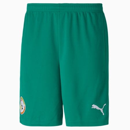 Senegal Home Replica Men's Football Shorts, Pepper Green-Puma White, small-GBR