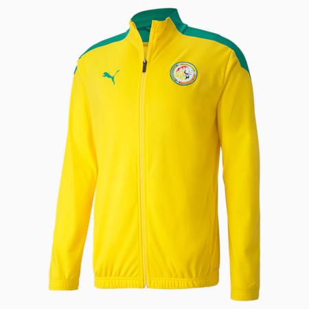 Senegal Stadium Men's Football Jacket, Dandelion-Pepper Green, small-GBR