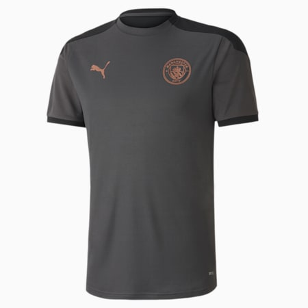 Manchester City dryCELL Training Men's Jersey, Asphalt-Copper, small-IND