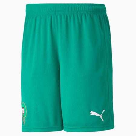 Morocco Home Replica Men's Football Shorts, Pepper Green-Puma White, small-GBR