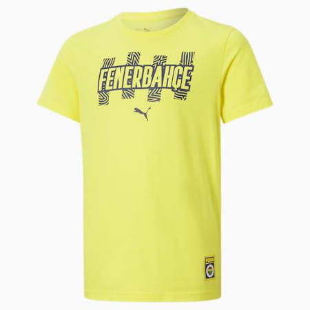 Fenerbahçe S.K Jugend ftblCore T-Shirt, Blazing Yellow-Medieval Blue, small