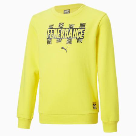 Sudadera juvenil de cuello redondo ftblCore del Fenerbahçe S.K, Blazing Yellow-Medieval Blue, small